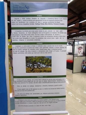 Exposição Biomas3
