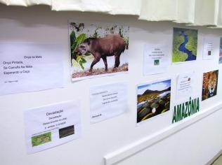 Exposição Biomas27