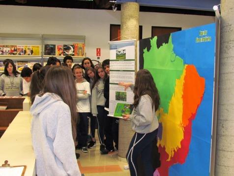 Exposição Biomas23