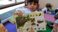 JDII - Pesquisa tartarugas5